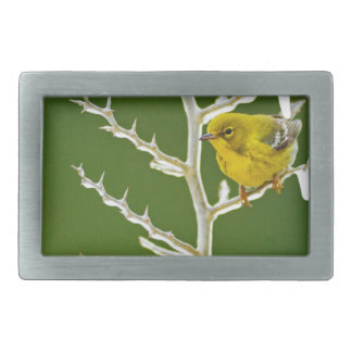 A Male Pine Warbler Perched on an Icy Branch Rectangular Belt Buckle