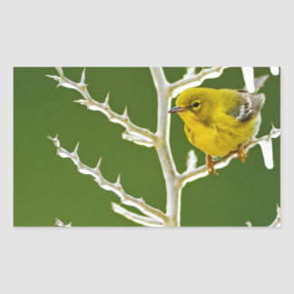 A Male Pine Warbler Perched on an Icy Branch Rectangular Sticker