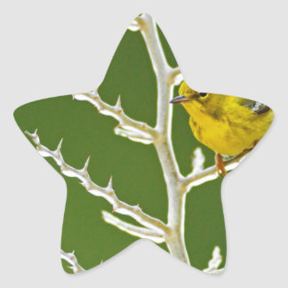 A Male Pine Warbler Perched on an Icy Branch Star Sticker