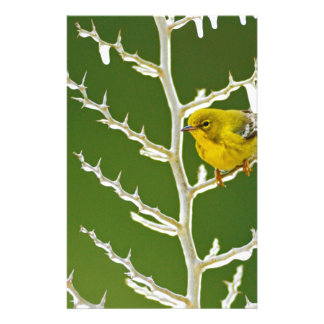 A Male Pine Warbler Perched on an Icy Branch Stationery