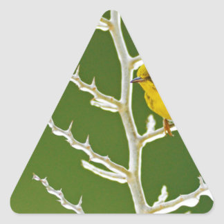A Male Pine Warbler Perched on an Icy Branch Triangle Sticker