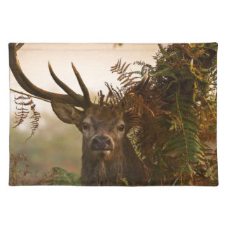 A Male Red Deer Blends in London's Richmond Park. Placemat