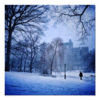 A Man Walking In Central Park On A Winter Evening Photo Print