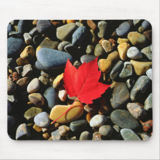 A Maple leaf on a Rock Background Mouse Pad
