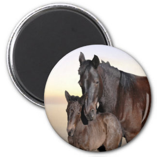 A mare and her baby foal 6 cm round magnet