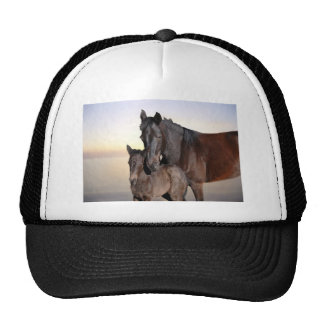 A mare and her baby foal cap