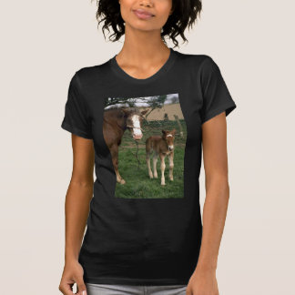 A mare and her foal, France T-Shirt