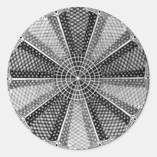 A Marine Diatom Classic Round Sticker