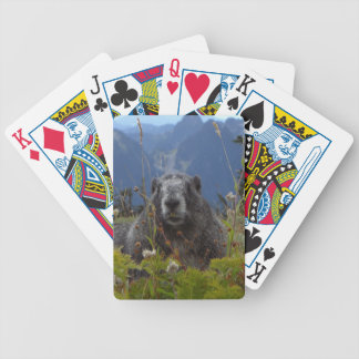 A marmot in Paradise in Mount Rainier National Par Bicycle Playing Cards