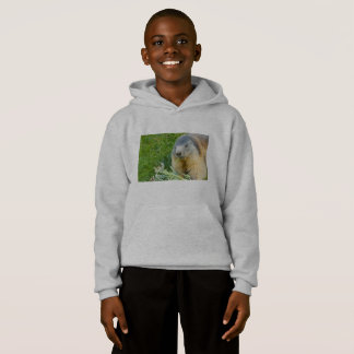 a  marmot on Kids' Hanes Comfort Blend® Hoodie
