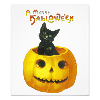 A Merry Hallowe'en Photo