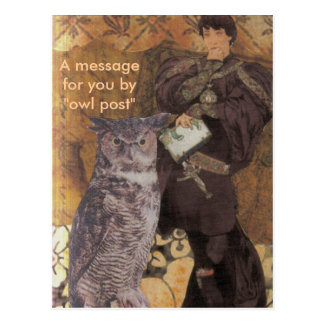 "A message for you by ""owl post"" postcard"