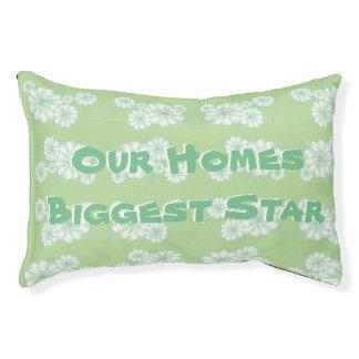 A Mint Green Flowered Pet Bed