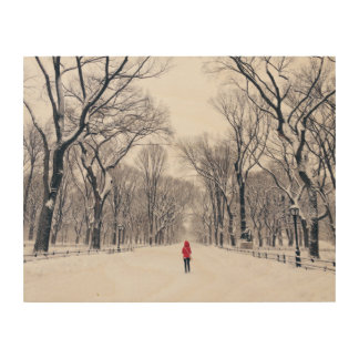 A Modern Little Red Riding Hood in Central Park Wood Canvas