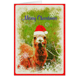 "A ""Mona the Camel"" Holiday Card"
