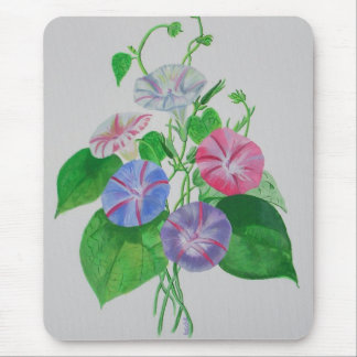 A Morning Glory Mouse Pad
