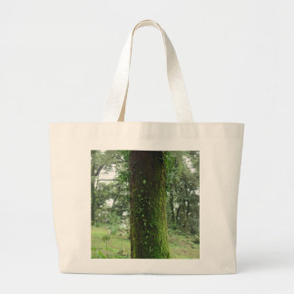 A moss covered beautiful tree canvas bags