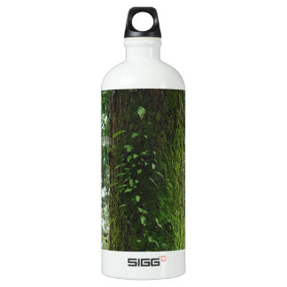 A moss covered beautiful tree SIGG traveller 1.0L water bottle