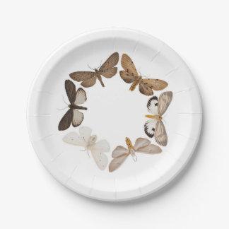 A moth plate