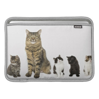 A mother with her four kittens sitting together MacBook sleeve