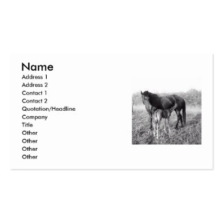 A Mother's Love Mare and Foal Business Card Templates
