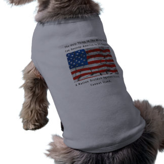 A Nation Divided Shirt