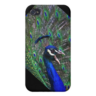 A Natural Angle On Color iPhone case. iPhone 4/4S Case