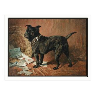 A Naughty Black Pug by John Emms Postcard