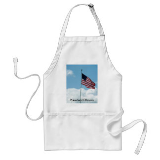A New USA President Obama Aprons