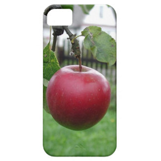A Nice Juicy Apple Case For The iPhone 5
