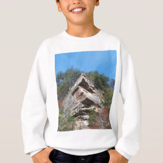 A Nice Rustic Cliff and Trees Sweatshirt