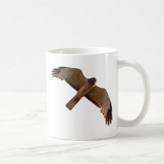 A Northern Harrier soars overhead Coffee Mug