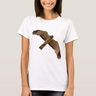 A Northern Harrier soars overhead T-Shirt