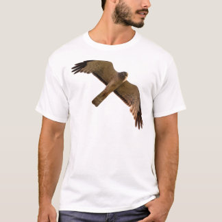 A Northern Harrier soars overhead T-Shirt