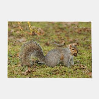 A Nutty Eastern Grey Squirrel Doormat