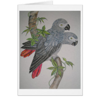 A Pair of African Grey Parrots watercolor painting Cards