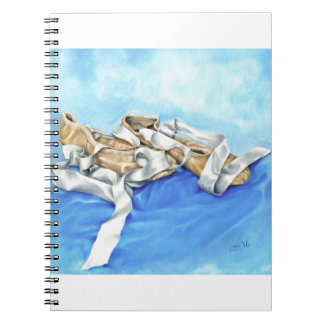 A Pair of Ballet Shoes Notebooks