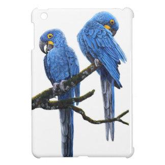 A pair of bright blue Hyacinth Macaws iPad Mini Cover