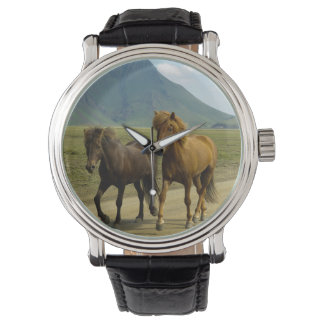 A Pair of Brown Icelandic Ponies Wrist Watches
