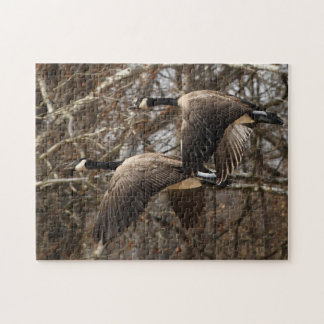 A Pair Of Canada Geese In Flight Jigsaw Puzzle