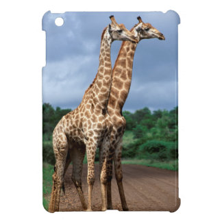 A Pair Of Giraffes On Road, Kruger National Cover For The iPad Mini