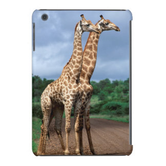 A Pair Of Giraffes On Road, Kruger National iPad Mini Retina Case