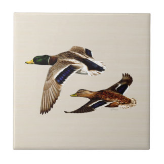 A Pair of Mallard Ducks Small Square Tile