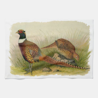 A pair of Ring necked pheasants in a grassy field Tea Towel