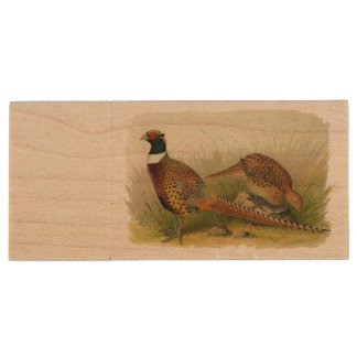 A pair of Ring necked pheasants in a grassy field Wood USB Flash Drive