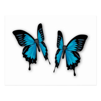 A Pair of Tropical Blue Butterflies Postcard