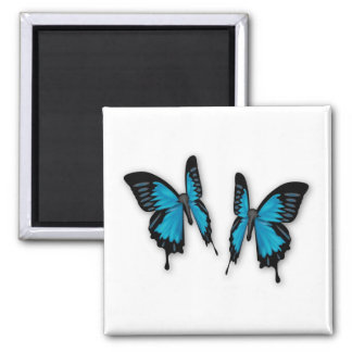 A Pair of Tropical Blue Butterflies Square Magnet