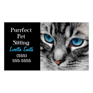 A-PAL - Silver Tabby Cat with Blue Eyes Close Up Pack Of Standard Business Cards