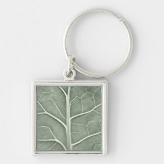 A pale leaf, partially out of focus key ring