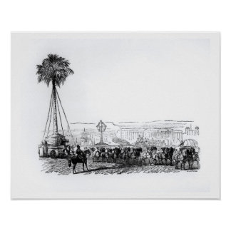 A palm tree being transported to Hyde Park for the Print